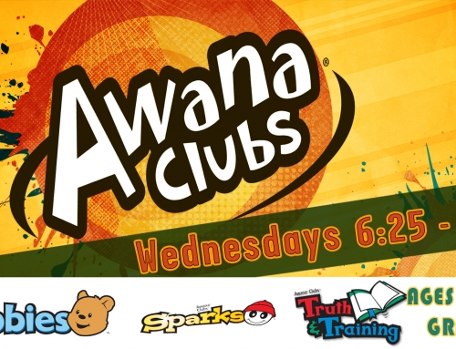 Awana Nights